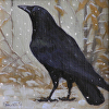 "Crow No. 3 (First Snow) by Susan Parmenter Oil ~ 5"" x 5"""