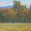 "Mr. French's Field (plein air sketch) by Susan Parmenter Pastel ~ 4"" x 6"""