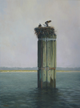 Coexist-Osprey Nest On Cape Cod - Oil