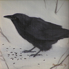 "Crow No. 4 by Susan Parmenter Oil ~ 5"" x 5"""