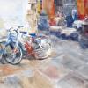 Siena Cycles