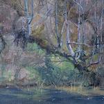 Nancy Romanovsky - Oil Painters of America Western Regional Show