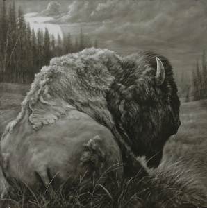 Buffalo Moon by Charles Ewing India Ink on Claybord ~ 30 x 30