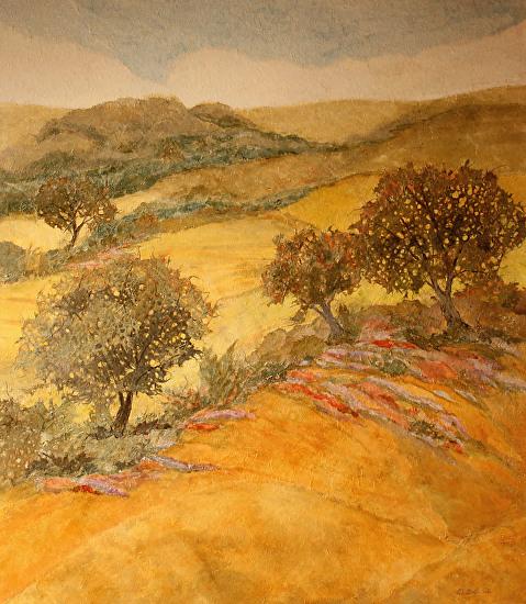 Canyon Oaks -