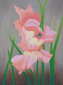 "Gladiolus by Mary Murphy Oil ~ 16"" x 12"""