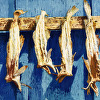 Dried Fish, Greenland