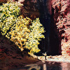 Virgin River Hiker