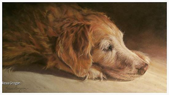 """Honey"" - Limited Edition signed prints available - Pastel"