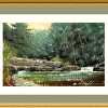 Pocono Mountains Trout Stream Study