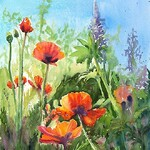 Kim Caldwell - Dancing Poppies and Merry Lupines in Watercolor