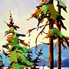 "B.C. MOMENT by Nancy O'Toole Acrylic ~ 18.5"" x 10 5"""
