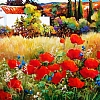 "SPRING IN SPAIN by Nancy O'Toole Acrylic ~ 24"" x 36"""