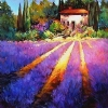 MORNING IN PROVENCE by Nancy O'Toole  ~ Image available in 2 sizes on canvas or paper x