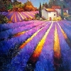 Evening Light Provence by Nancy O'Toole Acrylic ~ 36 x 36
