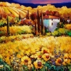 Summer Evening France by Nancy O'Toole Acrylic ~ 30 x 40