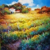 September near Foussais, France by Nancy O'Toole Acrylic ~ 36 x 36
