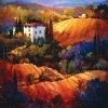 "Evening GlowTuscany by Nancy O'Toole Acrylic ~ 36"" x 36"""