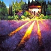 "Morning in Provence by Nancy O'Toole Acrylic ~ 36"" x 36"""