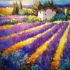 Early Morning, Provence by Nancy O'Toole Acrylic ~ 20 x 30