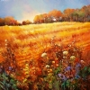 "The Farmers Field at Le Chene Rond, France by Nancy O'Toole Acrylic ~ 40"" x 40"""