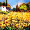 Summer Days in Tuscany by Nancy O'Toole Acrylic ~ 24 x 36