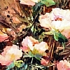Old Peonies by Nancy O'Toole Acrylic ~ 36 x 12