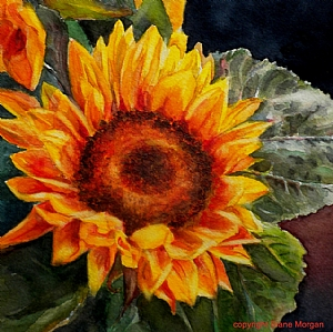 """Sunkissed by Diane Morgan Watercolor ~ 9"""" x 9"""""""