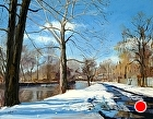 Sycamore along the canal, winter by Sandra Corpora Oil ~ 14 x 18