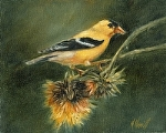 Gold Among the Thistles by Marie Merritt Oil ~ 10 x 8