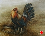Cock of the Walk by Marie Merritt Oil ~ 11 x 14