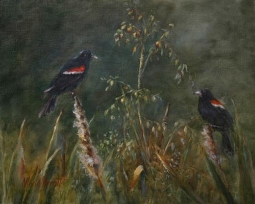 Red Wings and Cat Tails by Marie Merritt Oil ~ 16 x 20