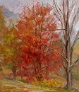 "Autumn Maple by Elizabeth Torak Oil ~ 12"" x 10.25"""