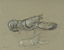 Lobster #3 by Elizabeth Torak charcoal and conte ~ 9 1/2 x 12 1/4