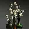 NARCISSUS arrangement in green and white