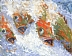 On Ice by Kay Deardorff