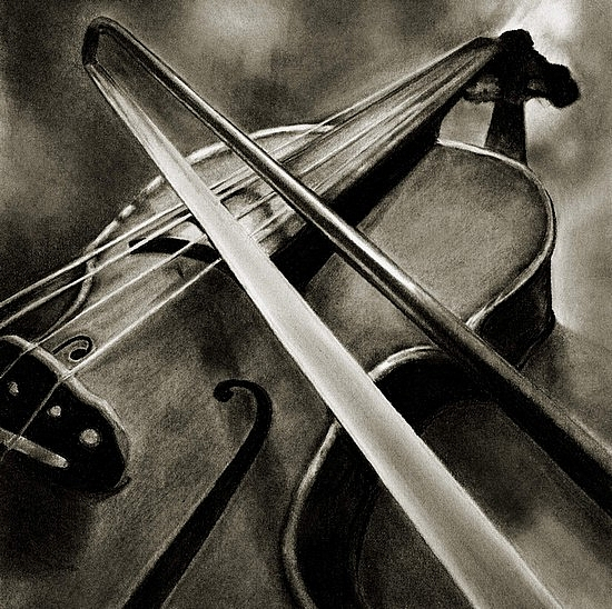 Violin...serenade  (large) by Marsha Robinett Carbon Pencil ~ 12 x 11