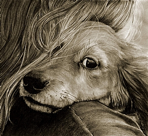 My Baby  (large) by Marsha Robinett Carbon Pencil ~ 11 x 10