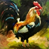Rooster Dance