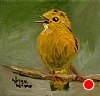 "Yellow Warbler Sings! by Norma Wilson Oil ~ 6"" x 6"""
