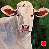 "Irish Cow On Green by Norma Wilson Oil ~ 20"" x 20"""