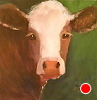 "All Mine! by Norma Wilson Oil ~ 12"" x 12"""