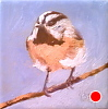 "My Little Chicadee! by Norma Wilson Oil ~ 6"" x 6"""