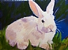 White Rabbit by Norma Wilson Oil ~ 9 x 12
