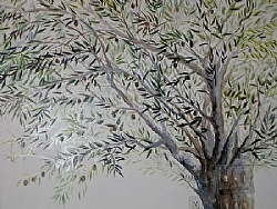 3. Olive Tree Mural Close up by  Anthe Acrylic ~  x