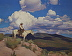 High Desert Drifter 32x40 by Glenn Dean