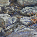 carolyn hartling - Yosemite Renaissance 35