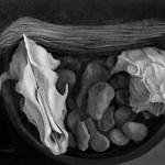 Patricia Domanski - Black and White All Media Exhibition