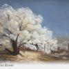 Sunlit Frost