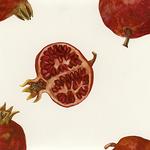 Monica Loncola - In the Presence of Pomegranates