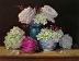 """""""Floral Abundance"""" by Amanda Fish"""